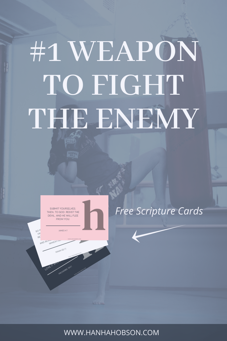 fight the enemy, declare God's truth, confessions, faith blogger, christian blogger, bible study, scripture, confessions posts, posts about confessions, christian living